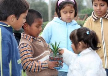 Kinder im Garten (Foto: M. Obholzer)