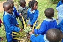 Kleine Kinder aus dem SOS-Kindergarten besuchen einen Lehrbauernhof (Foto: SOS-Archiv).